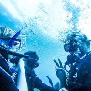 students underwater