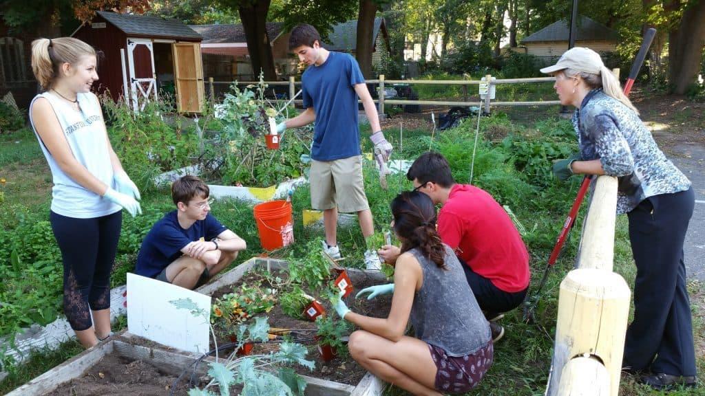 Trinfo.Café community garden