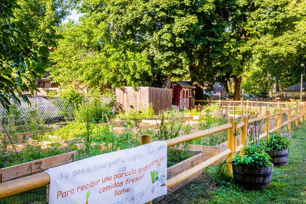 Community garden at Trinfo.Cafe