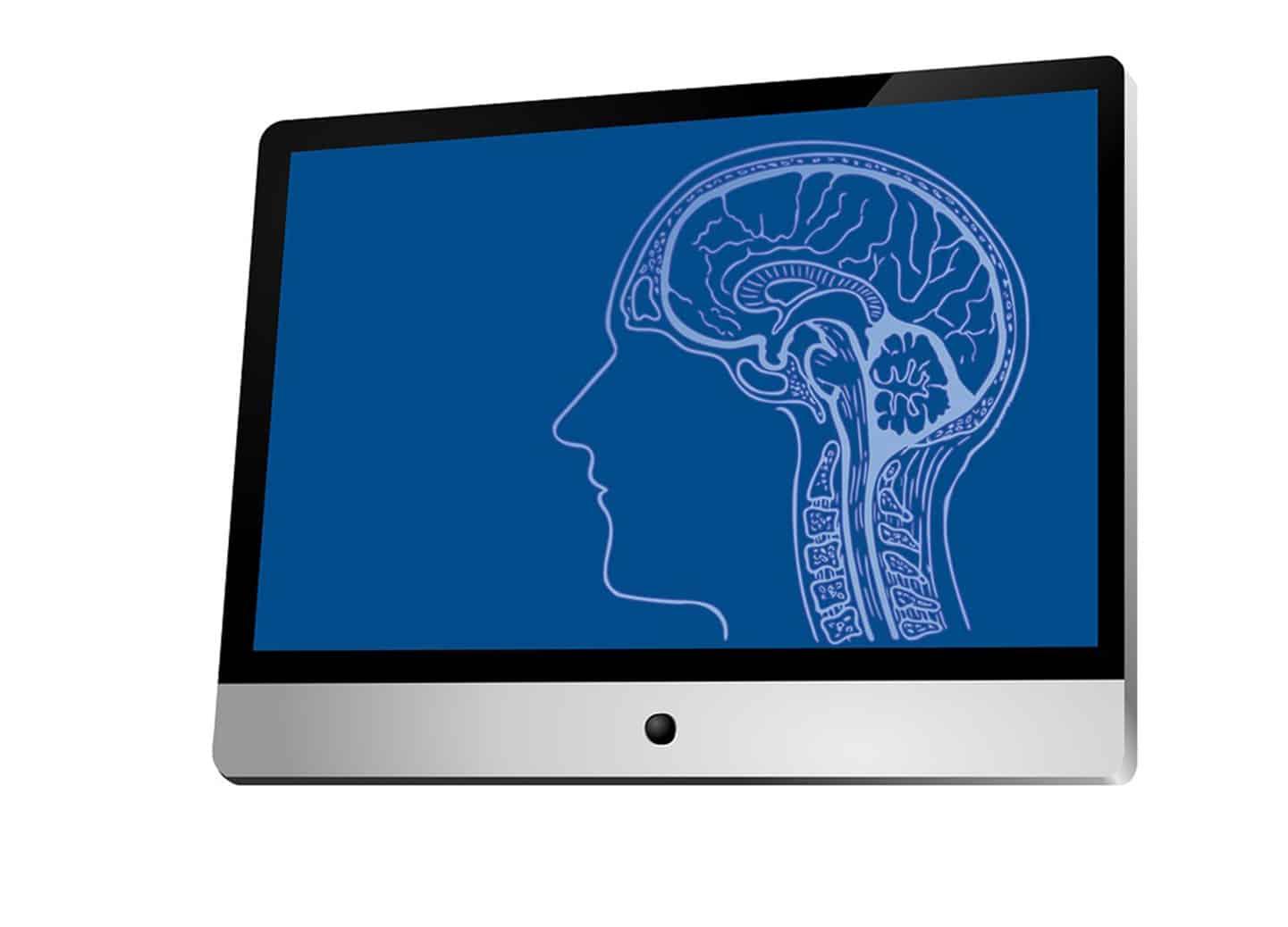 brain scan, neuroscience